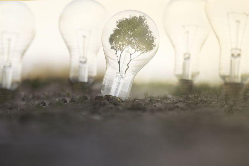 再生可能エネルギーのデメリットや問題点は?